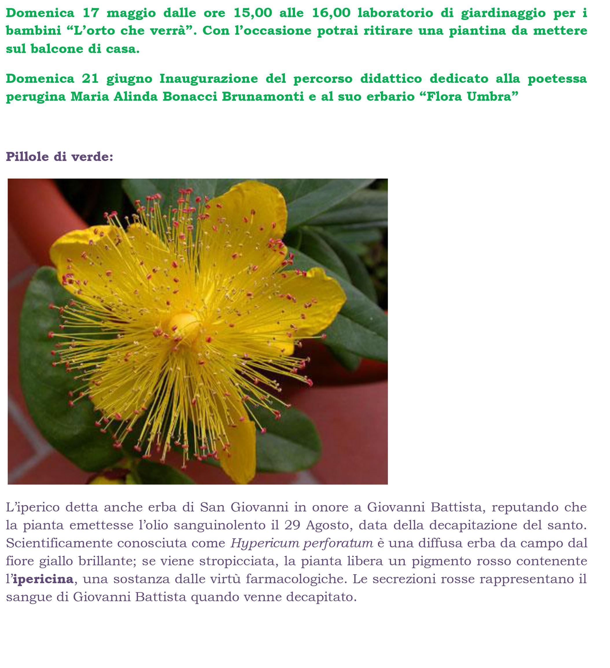 Progetto-Community-Garden-2